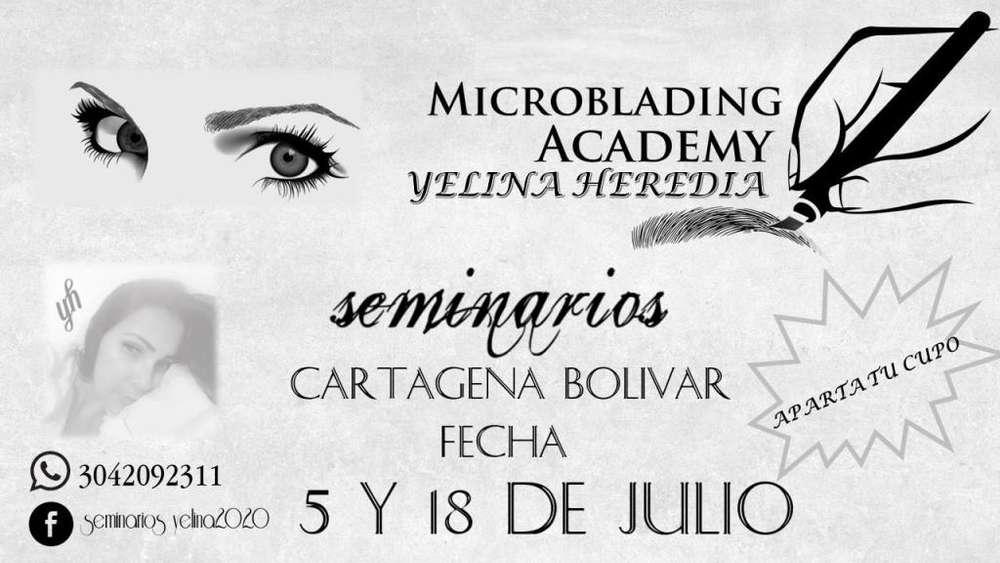 SEMINARIOS DE MICROBLADING