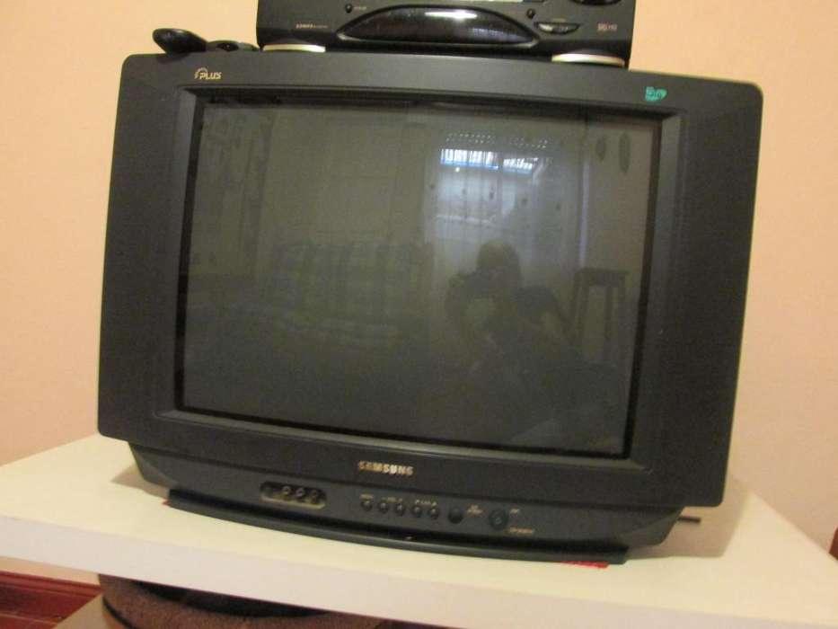 Tv Samsung 21 Pulgadas Bio Visión Plus