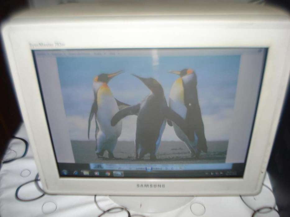 Monitor Color 17 Samsung Pantalla Plana Exel. Calidad Imagen