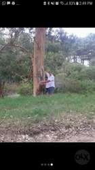 Terreno en Las Gabiotas 13por 45