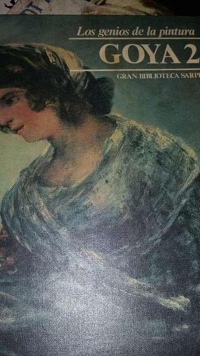 Libro de Pintura Goya Leer Descripcion