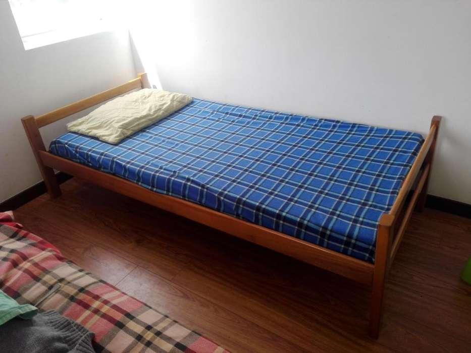 cama sencilla con colchon
