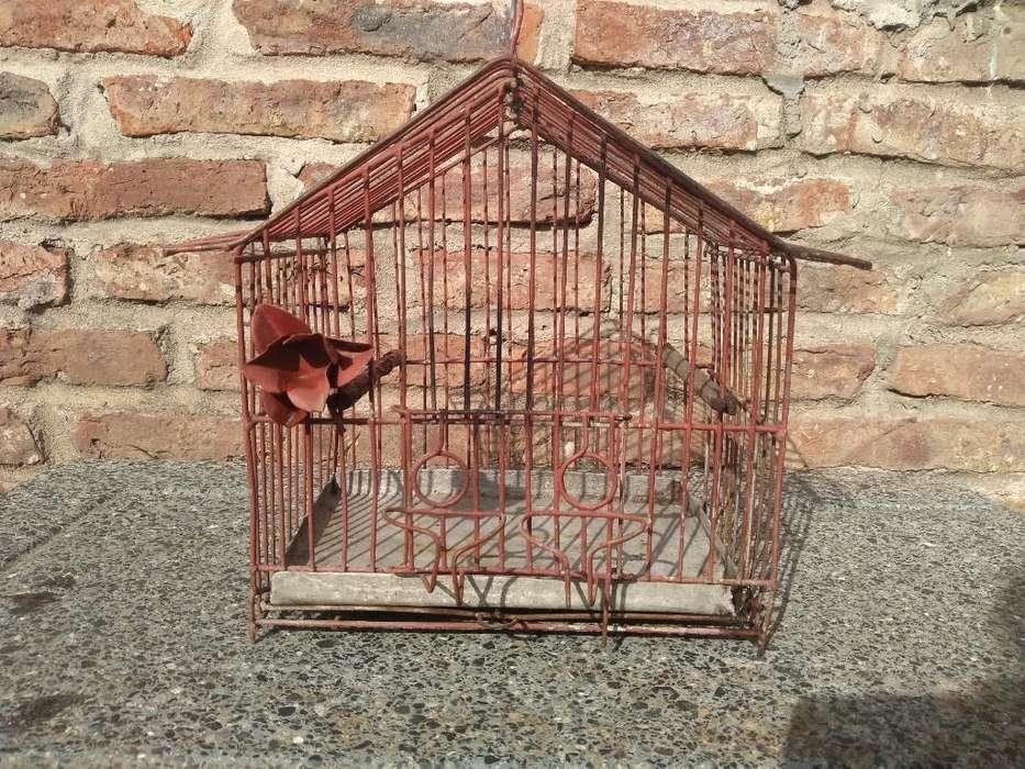 Jaula para Pájaro
