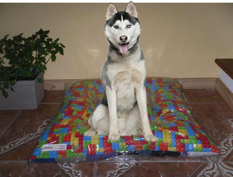Camitas para mascotas (excelente cálidas) * Alma&Tuina *