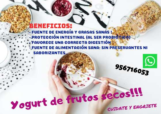 Yogurt Frutos Secos