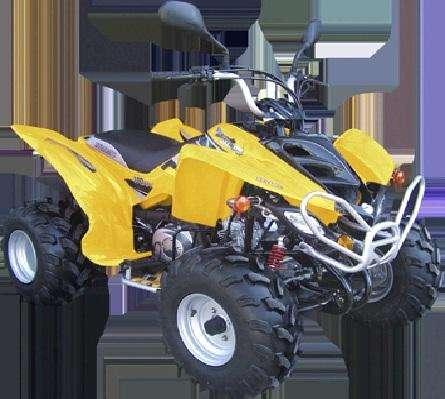 Cuatriciclo Dynamic Spor Truck Atv 110 cc
