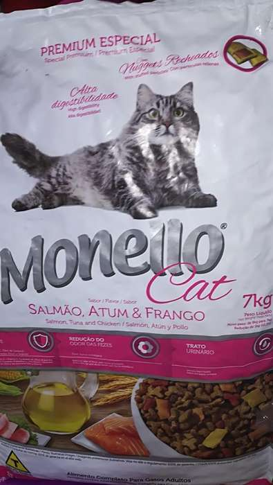 Monello Gatos Salmón