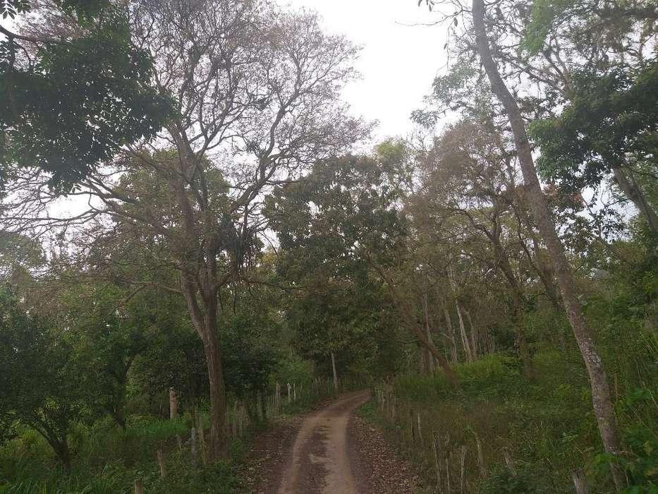 Se Vende Terreno en El Estero La Palma