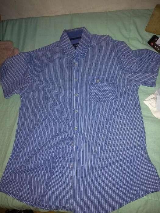 Camisa Marca Arturo Calle Talla L