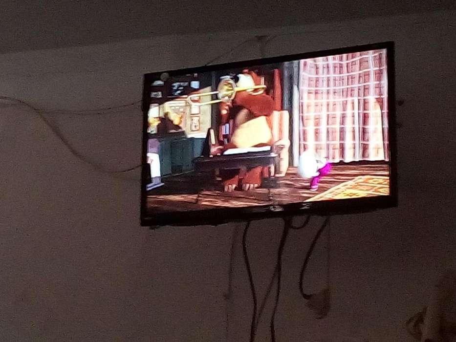 Vendo Mi Tv Sankey de 24 con Su Cargado