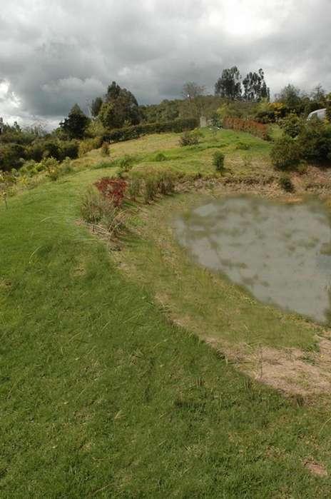 Casa Campestre En Venta En Tabio Vereda Rio Frio Oriental Cod. VBRKS42150383