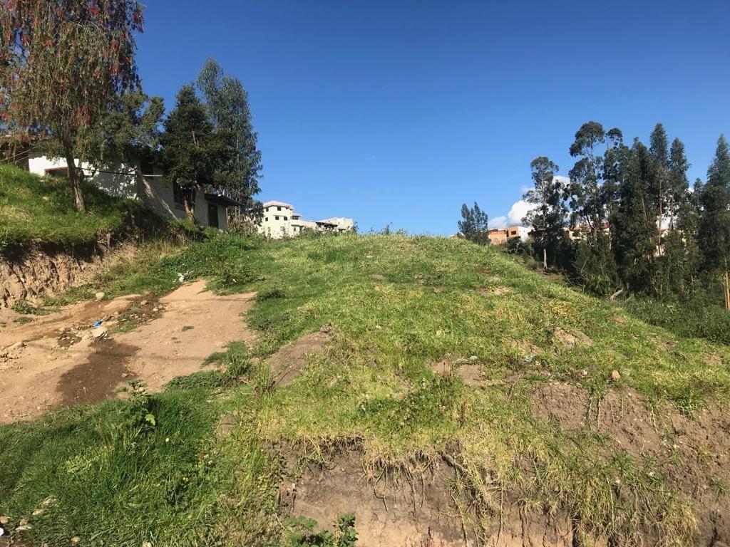 Se Vende Precioso Terreno 250 m2, Sector El Cebollar, (San Pedro)