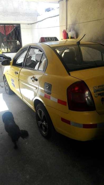 Chofer Profesional para Taxi Legal