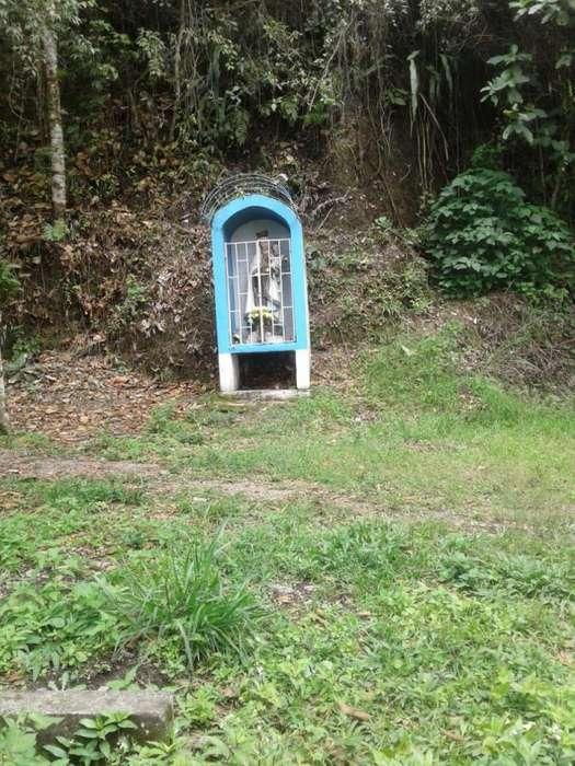 Se alquila finca para descanso en la vega cundinamarca vía la vega sasaima