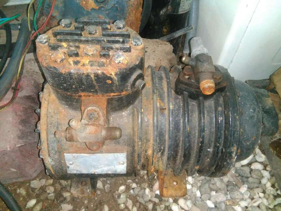 Motor Heladera Comercial 1 Hp