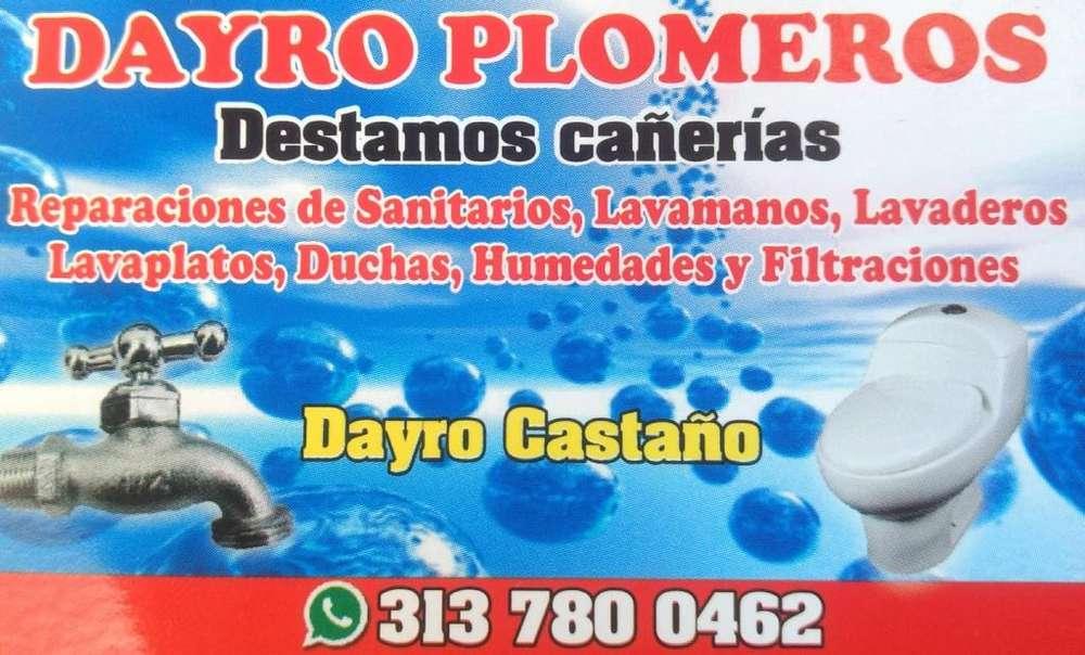 DAIRO - PLOMEROS Cel: 3137800462