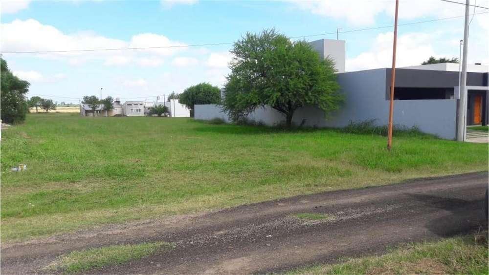 Los Horneros 100 - UD 19.000 - Terreno en Venta