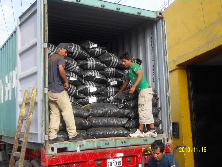 curcuma exportamos