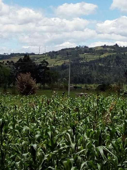 lote rural (simijaca)