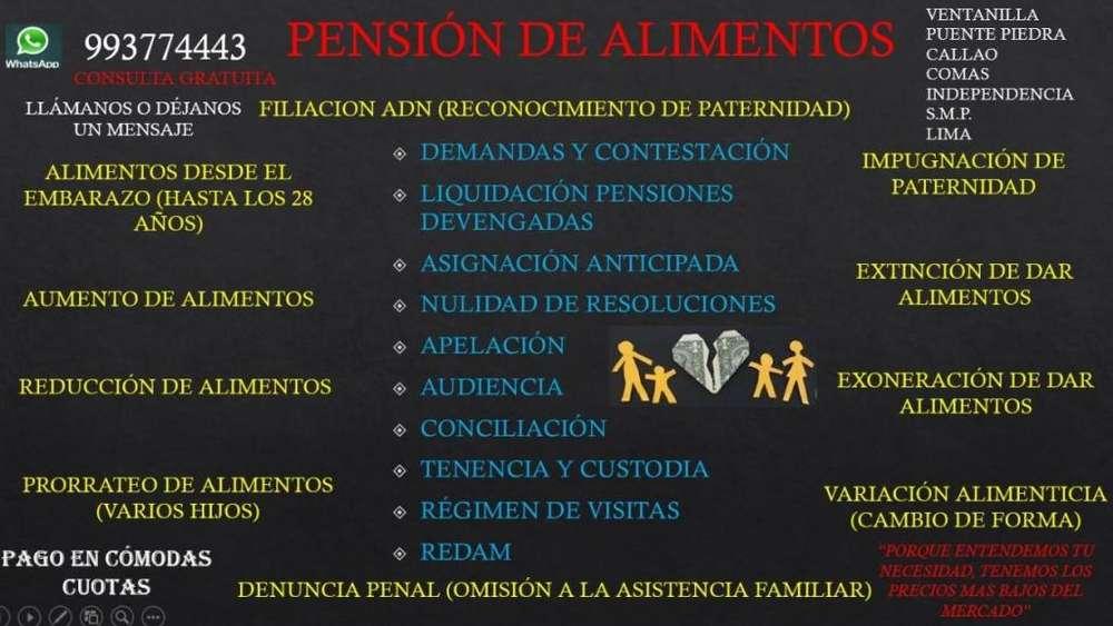 PENSION DE ALIMENTOS DEMANDA