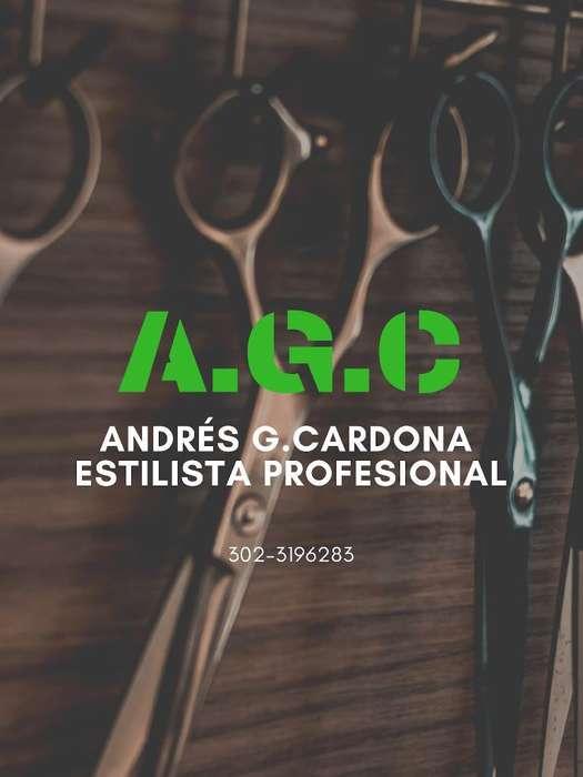 Estilista Profesional a Domicilio