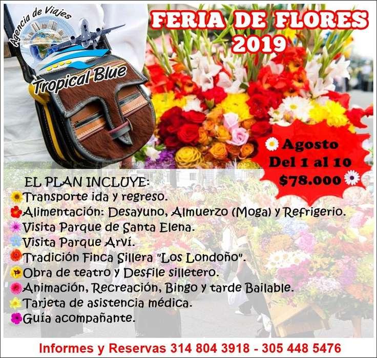 FERIA DE FLORES 2019