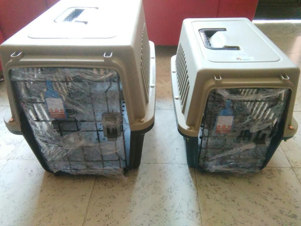 Transporte Plastico para Cachorros