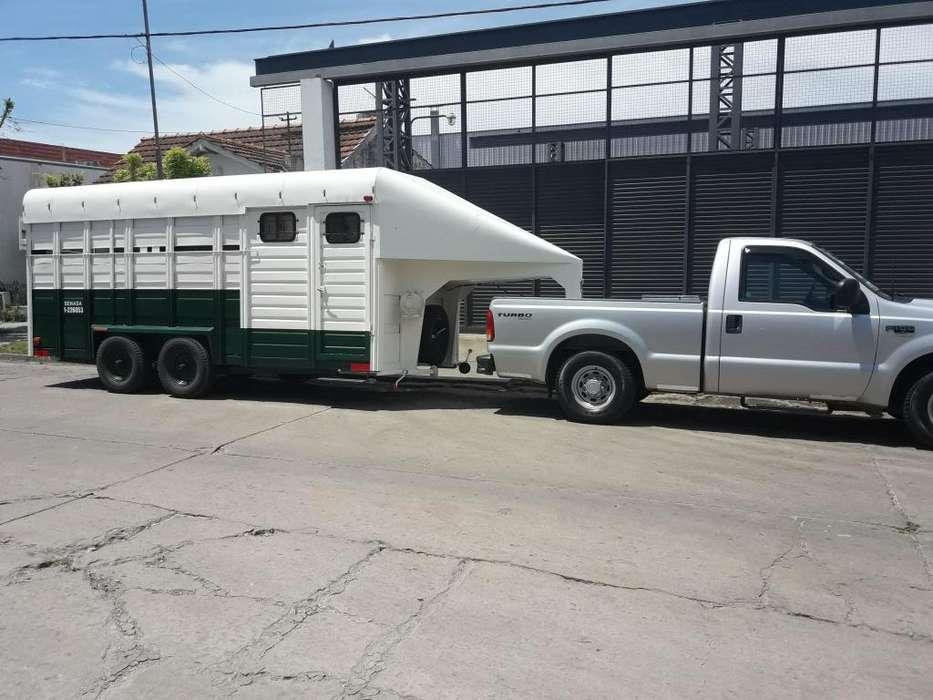 Trailer p/5 caballos. Criadores. Cabañas de exposición. Equinos