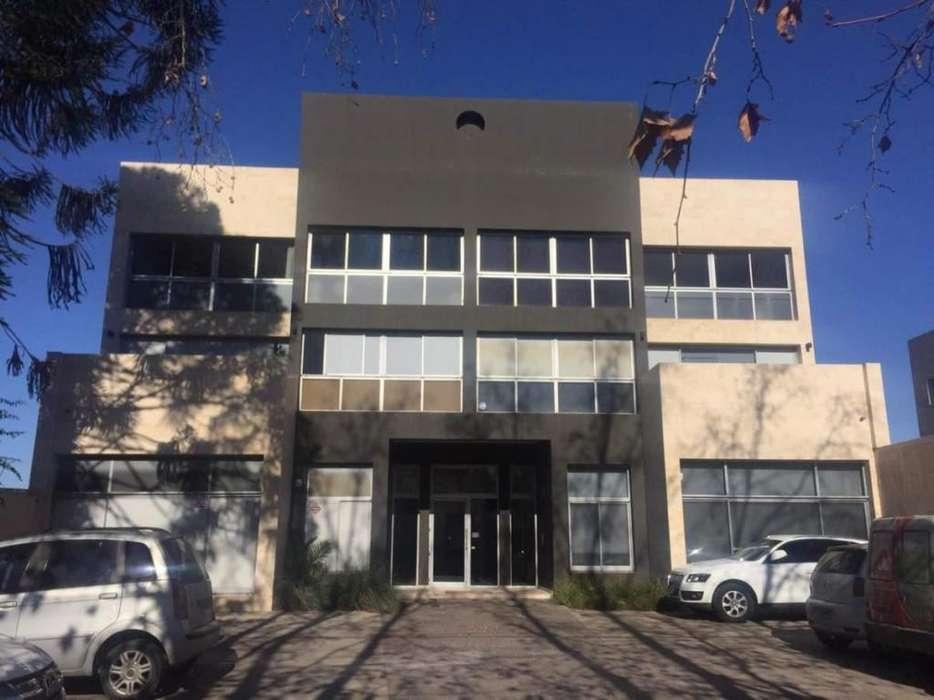 Oficina en alquiler Cerro de las Rosas.