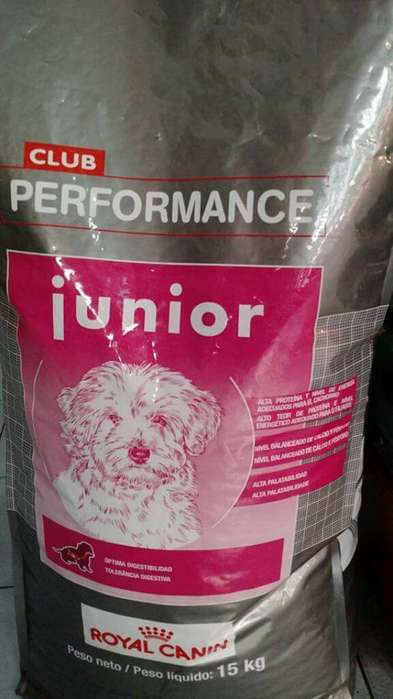 Royal Canin Club Performance Junior 15 kg O F E R T A