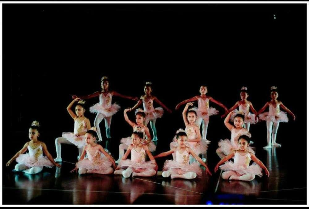 Ballet para Las Princesas Del Hogar