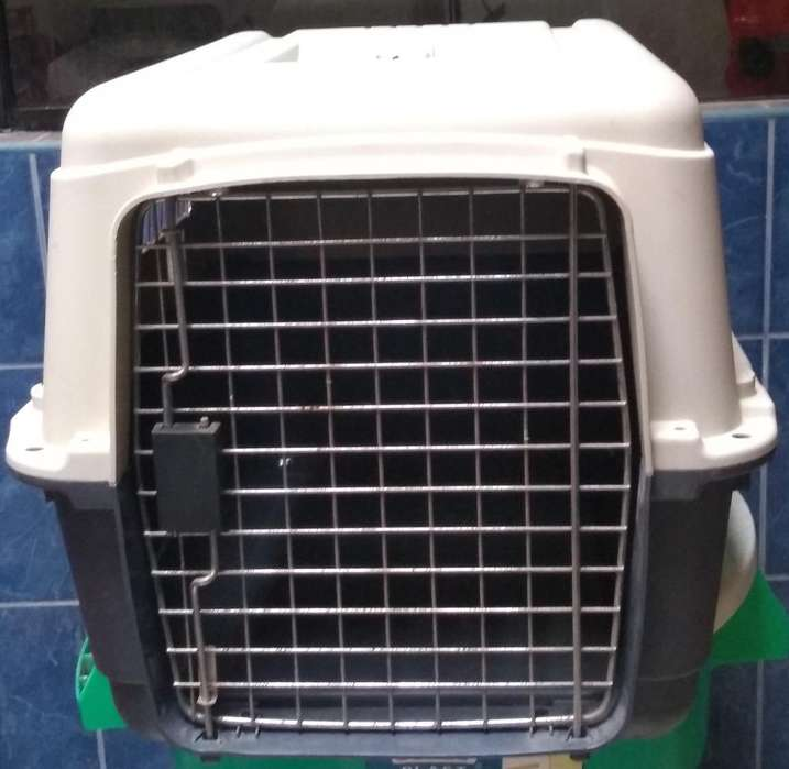 Kennel L60 ( Negociable )