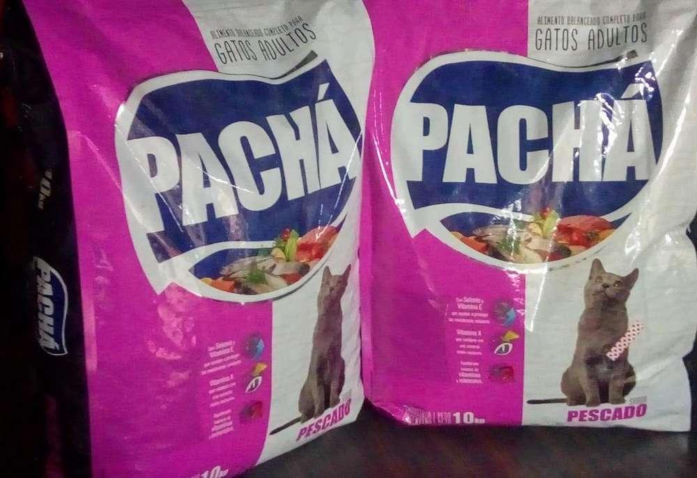 Alimento para <strong>gato</strong>s Pachá