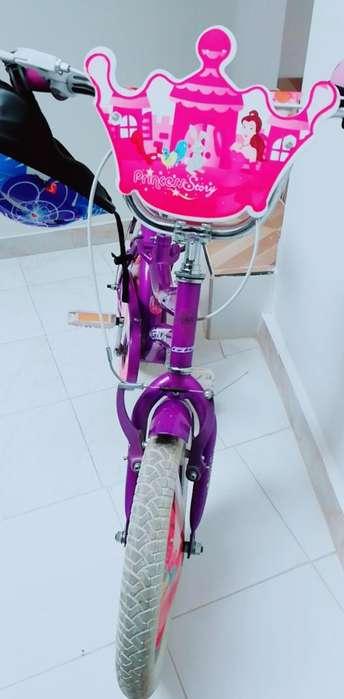 Hermosa Bicicleta para Niña de 3 a 6 Año