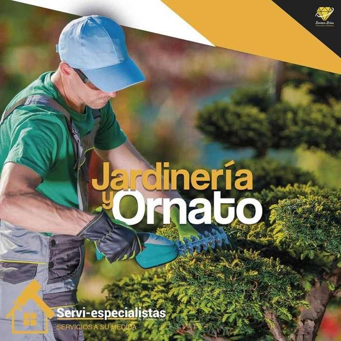 Jardinería Ornato