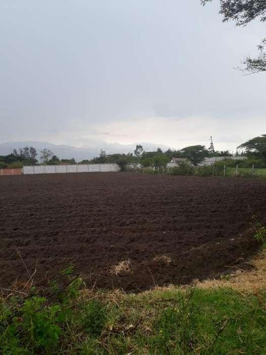 Venta terreno plano y limpio entre el Quinche y Guayllabamba, instalación servicios básicos