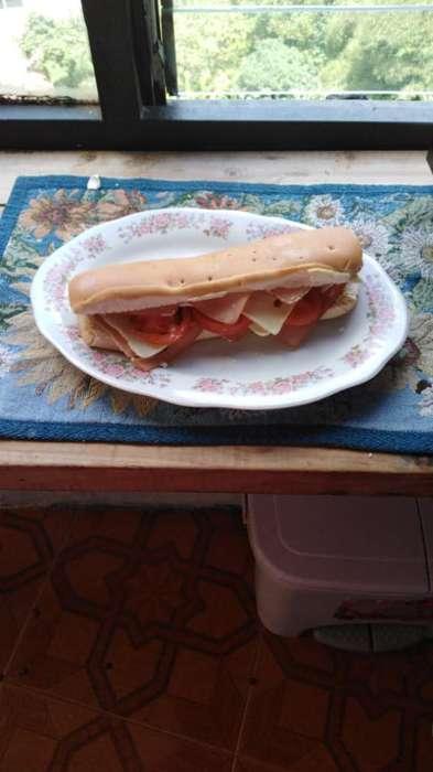 Venta de Sandwich a Domicilio Fiestas
