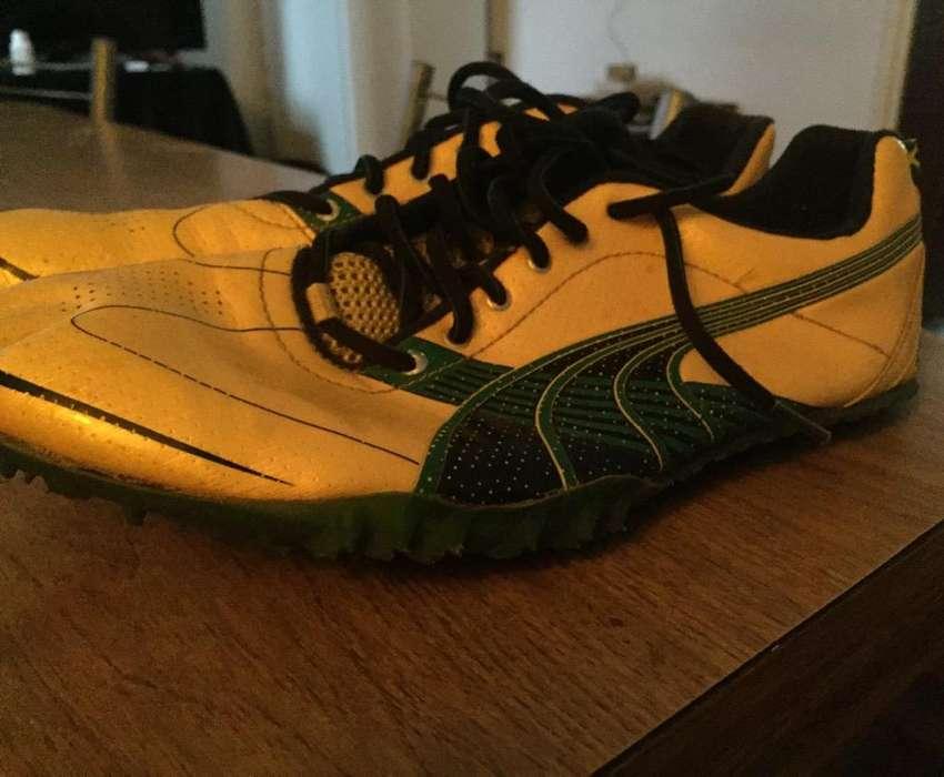 Zapatillas con Clavos Atletismo Talle 42