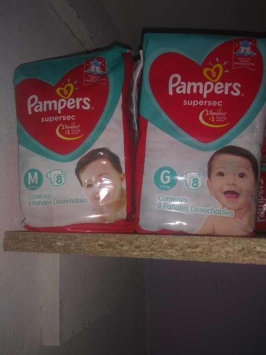 Pañales Pampers M Y G