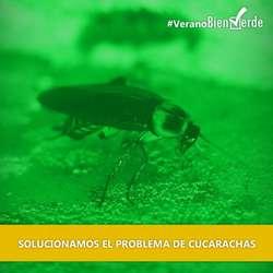 Desinfecciones Control de Plagas BIEN VERDE Cordoba