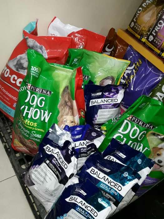 Comida para Perros Y Gatos