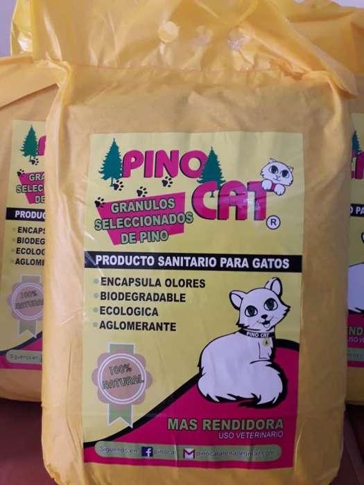 Arena para Gatos Pino Cat