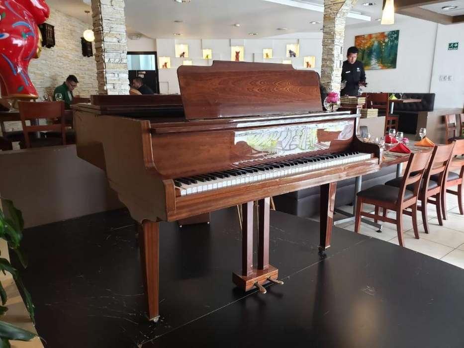 Piano Baby Frances Cuarto de Cola