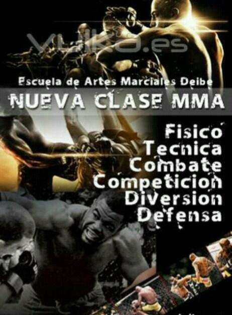 Clases personalizadas de MMA y defensa personal