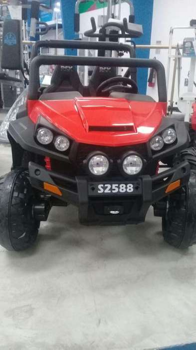 Carro Polaris ORIGINAL