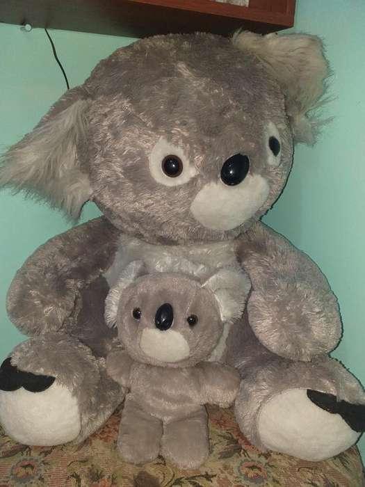 Koalas de Peluches