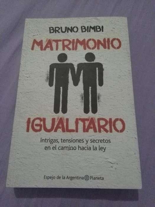 MATRIMONIO IGUALITARIO . BRUNO BIMBI . MUY BUEN LIBRO 2010 PLANETA