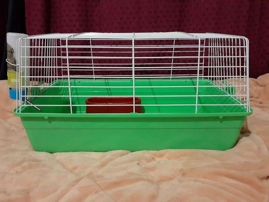 Jaula para Cobayos/conejos