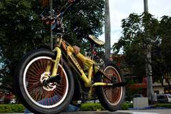 Vendo Cambio Bicicleta Bmx Personalizada