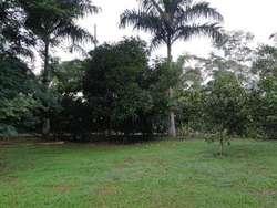 Casa Campestre En Venta En Santafe De Antioquia Sta Fe Antioquia Cod. VBMER195752
